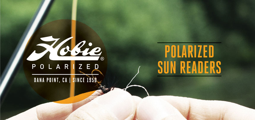 Polarized Sun Readers